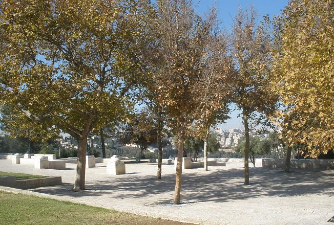 Осень в Иерусалиме.